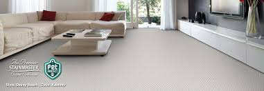stainmaster petprotect carpet and cushion carpet floor