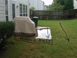 Water Ponding In Backyard Drainage Issue In Patio Area Lawnsite