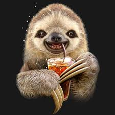 Sloth Meme Shirt - 6 different types of sloths in the rainforest with pictures and