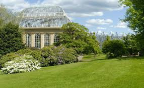 Edinburgh Botanic Gardens The Royal Botanic Garden Edinburgh Botanical Conservation