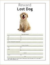 12 images of lost dog flyer template editable boatsee com