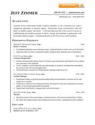 Resume Summary Statement Samples Resume Summary Statement Examples Customer Service Template