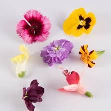 Edible Flowers Edible Flowers Flavor Components And Beauty On The Plate The