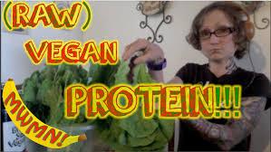 protein on a raw vegan diet vegan protein sources youtube