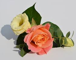 wedding flowers buttonholes simply flowers nottingham wedding flowers wedding bouquets
