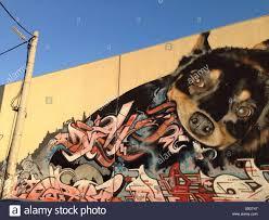 street art graffiti of dog eating graffiti words on wall in stock photo street art graffiti of dog eating graffiti words on wall in melbourne