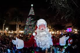 delray tree lighting rainforest islands ferry