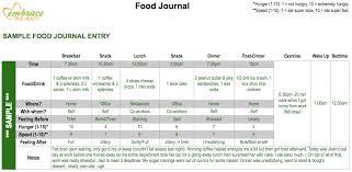 doc 585463 sample food diary template u2013 food log template 14