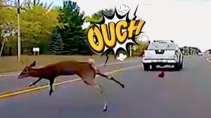 american car crash instant karma compilation 107 youtube