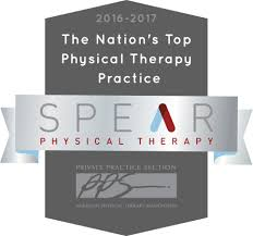 how we won the practice of the year award spear physical therapy nyc