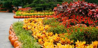 Dallas Arboretum And Botanical Garden Dallas Arboretum Botanical Society American Gardens