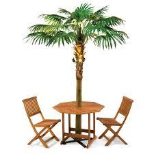 Palm Tree Outdoor Rug Lighted Palm Tree Umbrella The Green Head