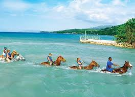 best tours in jamaica cruises rainforest tours and more