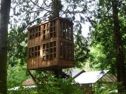 bespoke projects view across bridge to tree house arafen