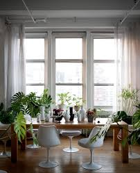 Dining Room Ceilings Glorious Indoor Plant Dining Room Industrial With White Dining