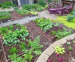 how to plant a full shade raised vegetable garden bed u2013year 2
