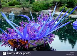 colorado u s japanese gardens chihuly garden and glass stock photos u0026 chihuly garden and glass