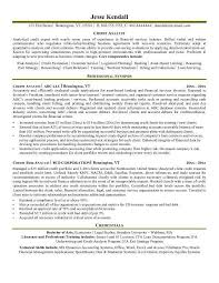 Sample Business Analyst Resume by Treasury Analyst Resume Sample Resume Samples Across All