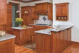 Birch Kitchen Cabinets Mission Style Birch Kitchen Craftsman Kitchen Cleveland By