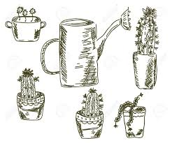 cactus doodle florist set sketch royalty free cliparts vectors