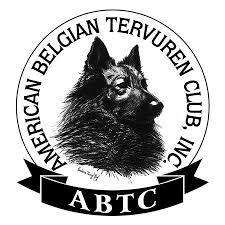 belgian tervuren club colorado rescues we work with pet conscious