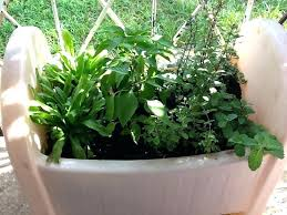 Herb Container Gardening Ideas Container Herb Garden Design Alexstand Club