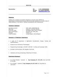 Job Application Resume Example by Examples Of Resumes Mock Job Application Writing Prompts To