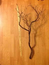 manzanita branches brown manzanita branches reception decoration tradesy
