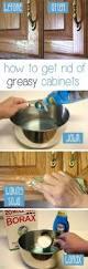best way to organize kitchen cabinets 173 best kitchen images on pinterest organization ideas kitchen