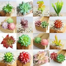 Home Floral Decor Artificial Succulents Plant Garden Miniature Cactus Diy Home