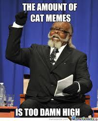 Overload Meme - cat memes overload by john mrn007 meme center