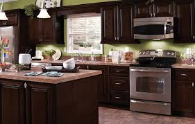 Can You Stain Kitchen Cabinets Darker How To Stain Kitchen Cabinets Black Home Decorating Interior