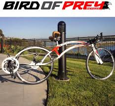bird of prey bicycle