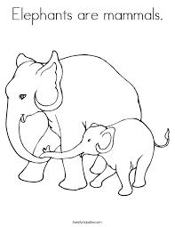 elephants mammals coloring twisty noodle