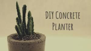 Concrete Succulent Planter Diy Concrete Planter Youtube