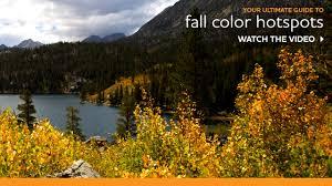 fall color viewing eastern sierra