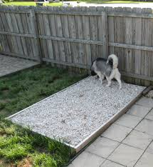 how to make a dog toileting area grasses patches and learning