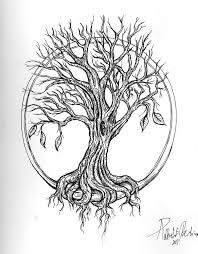 collection of 25 tree in celtic circle design