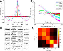 scale free neural and physiological dynamics in naturalistic