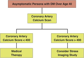 noninvasive cardiovascular risk assessment of the asymptomatic