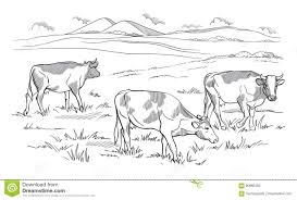 cows grazing on meadow hand drawn illustration stock vector