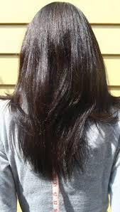 back of hairstyle cut with layers and ushape cut in back 22 best long hair images on pinterest long hair faces and hair dos
