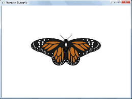 drawing butterflies and hearts only code small basic
