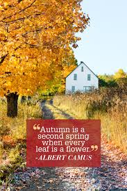 quotes about fall gardening famous inspirational quotes famous quotes about life