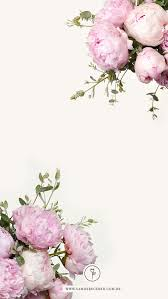 Flower Screen Backgrounds - 103 best wallpapers for mah phone images on pinterest wall