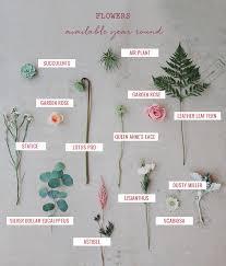 wedding flowers types year blooms