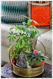 stylish ways to use indoor plants in your home décor