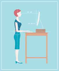 anew interior ergonomics consulting reviews
