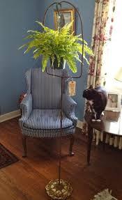 cool idea protect plants from pets u2026beautifully u2026 one stylish life