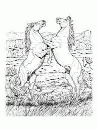 wild horses coloring pages ezshowerkit com ezshowerkit com